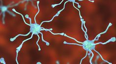 Scientists believe they can make replacement cells to repair the damage caused by this debilitating illness.