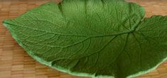 How To Create A Beautiful Decorative Cement Leaf. Big Leaves, Tree Leaves, Plant Leaves, Leave In, Cement Leaves, Decorative Leaves, Leaf Crafts, Make All, How Beautiful