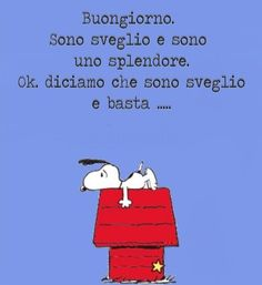 Good Mood, Family Guy, Humor, Fictional Characters, Avatar, Friends, Learning Italian, Quotes, Amigos