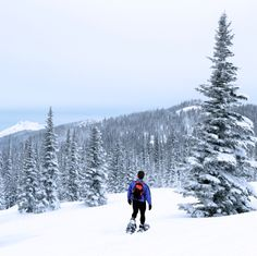 Tips and Techniques to Have a Fun Time Snowshoeing... winter camping or RVing, it's the outdoors activities that bring the fun!