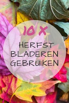 10x wat te doen met herfstbladeren Craft Projects, Projects To Try, Kids And Parenting, Awkward, Fall Decor, Helpful Hints, Arts And Crafts, Meet, Handmade