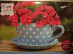 polka dot tea cups | GIANT BLUE WHITE POLKA DOT TEA CUP  SAUCER FLOWER PLANT POT PLANTER ...