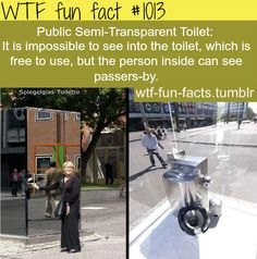 WTF-fun-facts : funny weird facts yea I don't think I could use that bathroom so weird Funny Weird Facts, Wtf Fun Facts, True Facts, The Funny, Random Facts, That's Weird, Strange Facts, Crazy Facts, Odd Facts