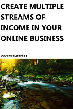 Create Multiple Streams of Income In Your Online Business