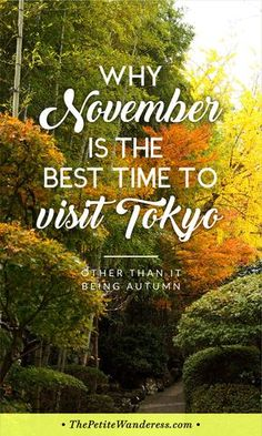 Why November is the Best Time to Visit Tokyo! • The Petite Wanderess via @thepetitewanderess