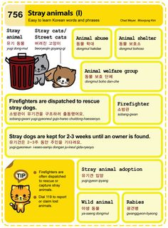 756 Stray animals (I)