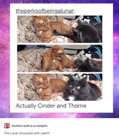 Actually Cinder and Thorne