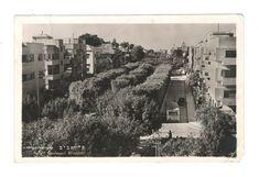 Israel postcard Tel-Aviv bauhaus Boulevard Rothsild 1949 | eBay Tel Aviv Israel, 4x6 Postcard, Israel Palestine, Jeddah, City Architecture, Mediterranean Sea, Old Postcards, Bauhaus, Ebay