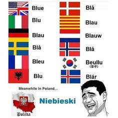 Som gresk i mine ører :-P Wtf Funny, Funny Memes, Hilarious, Haha, Polish Memes, Polish Language, History Memes, Funny Comics, Best Memes