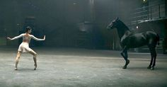 A Ballerina Begins Her Graceful Moves, But When The Horse Does This, I Was Speechliss - MostHappy.com