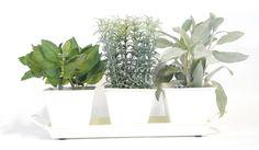 White Metal Herb Kit - Urban Farmer