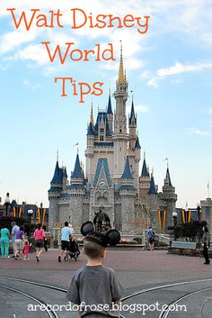 A Record of Rose: My Walt Disney World Tips