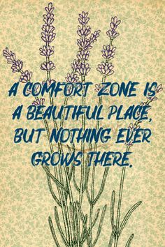 A comfort zone is a beautiful place but nothing ever grows there. 253/365 qotd 365project anonymous quotes comfort zone quote of the day quoteoftheday motivational quotes motivating words motivation inspirational quotes inspiring words inspiration quotes graphic design flowers floral lavender