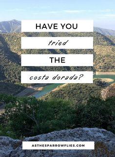Costa Dorada   Visit Spain   Salou   Cambrils   Tarragona   European Holidays