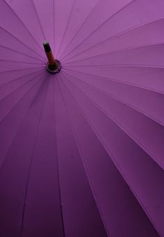 Purple unbrella