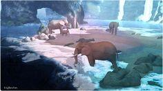 Loved the elephant area ......wintermoon2