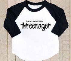 Funny toddler shirt beware of the threenager raglan