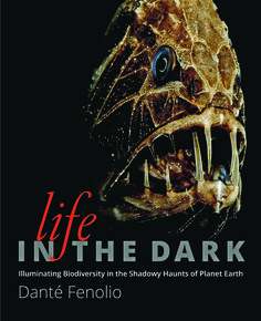 12 best judge a book images on pinterest book outlet outlet store stunning never before seen photographs of creatures that live in complete darkness fandeluxe Choice Image
