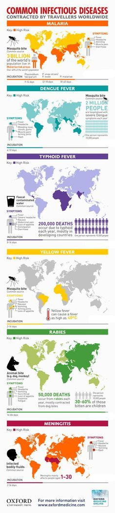 Common Infectious Diseases contracted by travellers worldwide Travel Medicine Infographic Oxford University Press Totem Studios Teaching Science, Life Science, Health And Wellness, Health Care, Typhoid Fever, Dengue Fever, Infection Control, Medical Science, Medical Information