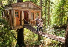 The Out-n-About-Treesort in Oregon... one of five cool outdoor vacation spots for families. This would be SO neat to do some day.