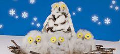 snowy owl activity - national wildlife federation activities for kids Owl Activities, Winter Activities For Kids, Activity Ideas, Toddler Activities, Animal Fun, Animal Crafts, Autumn Crafts, Nature Crafts, Winter Art