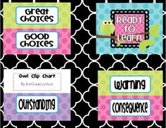 3rd Grade's a Hoot: Freebie Owl Classroom Clip Chart- Something to Hoot about!