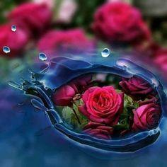 في قلب كل إنسان زهرة تتفتح باللطف. فالكلمات الجميلة نهر بارد وعذب يداوي ظمأ القلوب Cabbage, Vegetables, Food, Quotes, Flower Arrangements, Floral Arrangements, Quotations, Essen, Cabbages