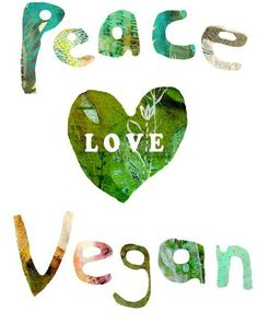 """""""All beings tremble before violence. All fear death, all love life. See yourself in others. Then whom can you hurt? What harm can you do?"""" - Buddha #peace #love #vegan"""