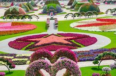 New attraction in Dubai   The worlds biggest Flower Garden   32 PHOTOS