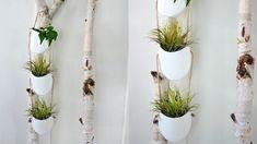 Tự chế cây san hô đẹp như thật mà siêu đơn giản Plant Hanger, Macrame, Plants, Decor, Decorating, Plant, Inredning, Interior Decorating, Deck