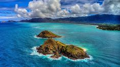 Popular Holiday Destinations, New Zealand North, Bay Of Islands, Water Activities, Marine Life, East Coast, Places To See, Digital Marketing, The Incredibles
