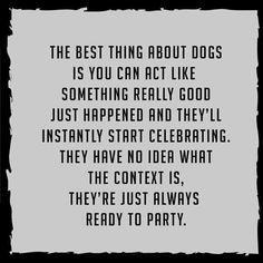 The best thing about dogs is you can act like something really good just happened and they'll instantly start celebrating. They have no idea what the context is, they're just always ready to party.