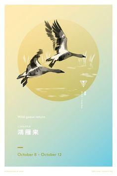 Wild geese return