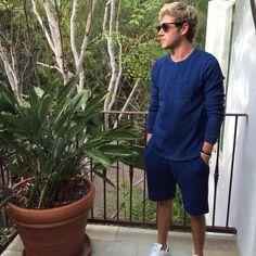 // Niall Horan //