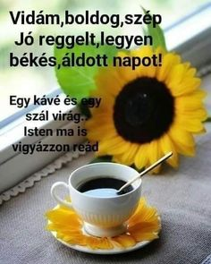 Good Morning, Humor, Buen Dia, Bonjour, Humour, Funny Photos, Funny Humor, Comedy, Good Morning Wishes