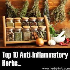 Top 10 Anti Inflamma