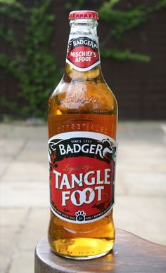 Bottled Beer of the World - pjb 13 - Picasa Web Albums - Badger Tanglefoot Ale (5%) - Hall & Woodhouse Brewey Blandford St. Mary Dorset England