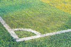 Learn how to remove urine stains on your artificial pet turf and keep your pet's play space clean! Dog Urine, Pet Odors, Pet Odor Remover, Turf Installation, Urine Stains, Artificial Turf, Pet Safe, Save Water, Grass