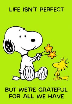 Snoopy Images, Snoopy Pictures, Snoopy Comics, Fun Comics, Peanut Pictures, Snoopy Tattoo, Winnie The Poo, Snoopy Wallpaper, Snoopy Quotes