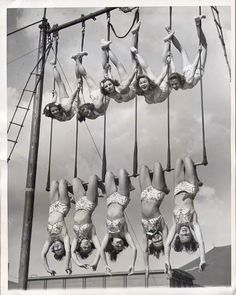 trapecistas