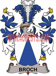 Broch coat of arms / family crest #denmark #by name #symbol #family #shield #crest #by last name #genealogy #heraldry #shields #danish #tattoo #craft #logo