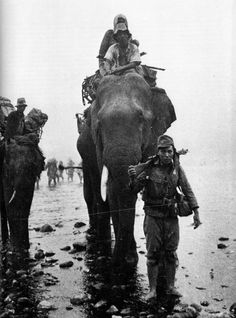 Japanese troops using elephants in Burma, 1944