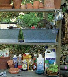 35 Garden Pest & Disease Remedies
