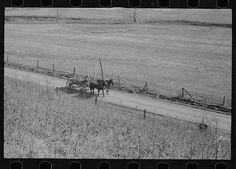 Abandoned farmland, Brown County, Indiana
