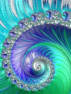 musartwork Fractal Print featuring the photograph Inspired By Nature Fractal Spiral by Mo Barton: