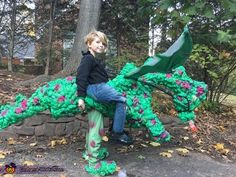 Dragon Rider - Halloween Costume Contest