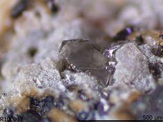 Wickmanite, Mn++Sn++++(OH)6, Langban, Filipstad, Varmland, Sweden. Colorless distorted octahedra