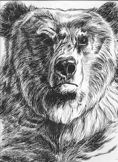 grizz3.jpg (356×490)