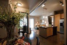 tampa fl apts http www rentalsgonewild com propertydetail 584