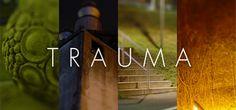 Trauma on Steam